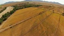 Farm - Farm Land/Organic