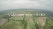 1736+- Ranch in Floral City, Citrus County